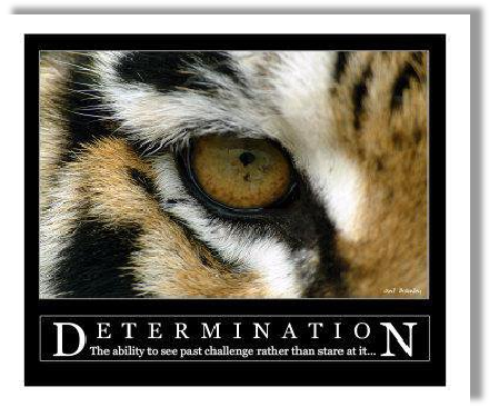 Entschlossenheit